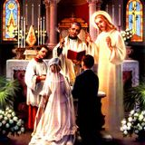 27th Sunday in Ordinary Time B, 2015