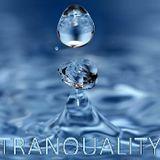 Techno-Tranquality Model 1