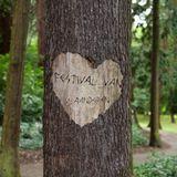 RVV Festival 2018 - 22 - Terug naar 1976 november