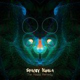 Spacey Koala - The Koala Remedy DEMO MIX (IV)