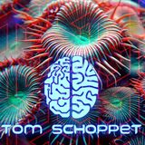 Tom Schoppet - Cerebral Wishes You A Happy New Year - Jan 2019
