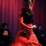 Flamenco Fix Feat La Joaquina Flamenco Express
