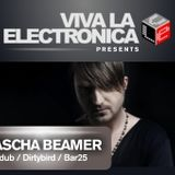 Viva la Electronica presents Sascha Braemer (Supdub / Highgrade / Dirtybird)