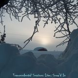 Trancendental Sessions Live: Snow'd In