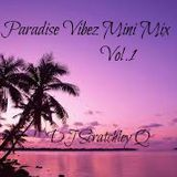 Paradise Vibez Mini Mix Vol.1