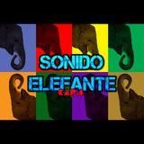 SONIDO ELEFANTE Cap.8