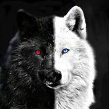 DJ-Nightwolf - club Mix
