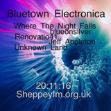 Bluetown Electronica live show 20.11.16
