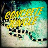 Concrete Jungle - 2018-08-23 - Dj Stalefish - New Itoa, Ray Keith, Dead Man's Chest, DJ Limited