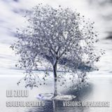 Soulful Spirit 5 - Visions of Paradise