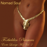 Forbidden Pleasures: Erotic Lounge Mix Vol. 2