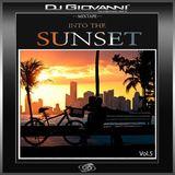 Into the Sunset Vol.5 (Destination Miami)