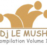 Dj Le Mush Compilation Vol.11 --- The Best House Song Of Summer 2012