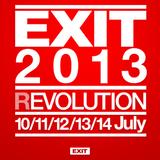 Fatboy Slim - Live at EXIT Festival (Serbia) - 11.07.2013