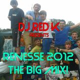 Renesse 2012 THE BIG MIX!