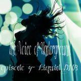 The Voice of Underground - episode 9 - Liquid DNB