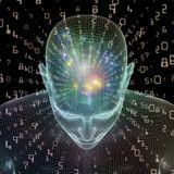 The Conscious WiFi ep.1 - #Biohacking