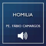 24/06/2016 - Homília da Solenidade de João Batista