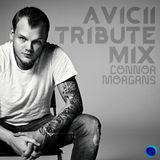 Avicii Tribute Mix: Connor Morgans