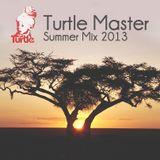 Turtle Master - Summer Mix 2013