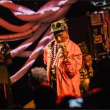 Subatomic Soundsystem/LSP/Adrian Sherwood/The Congos/Addis Pablo Live NYC 2013