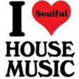 IN THE HOUSE - DEEP SOULFUL HOUSE VOL 1