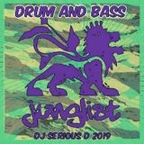 Drum & Bass Junglist - Dj Serious D 2019