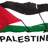 Viva Palestine Mix 2017