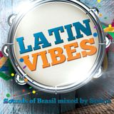 Latin Vibes 2 - Spinja samba-house mix session