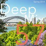 Deep Mix - Spring 2014