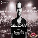 Liquid Soul - Parookaville Desert Valley Set 2018