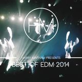 Best of EDM 2014 Mix