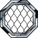 Octagon Side #1 (Pilot)