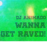 DJ Animado - Wanna Get Raved! mix
