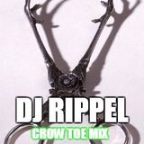 Dj Rippel  crow toe mix