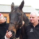All Things Equine with a Twist - Saturday 6th December 2014
