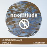 NA Podcast Season 1 Episode 3: Sam Shelley