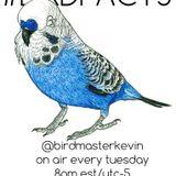 Birdmaster Kevin - RWD.FM Broadcast 4/21/2015
