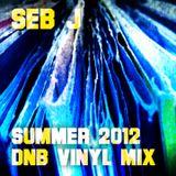 Seb J - Summer 2012 DnB Vinyl Mix