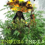 El Amaral / INDIAINDICA
