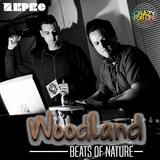 DJ contest for WOODLAND Festival 2017: ZEPEC