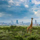 City Sound Nairobi 027