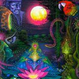 DJ FABIO AMIGO & MOORMOPS - MYSTICAL VOYAGERS VISIONARY SHAMANICS SHOW - 10/16