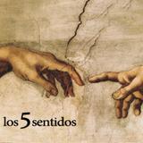 Los5sentidos -  Arte actual