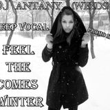 DJ AnTaNy (WeeDs) - Feel The Comes  Winter (Deep Vocal Promo Mix)