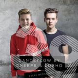 Danceflow Radioshow #39 (1st hr)