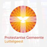 Trouwdienst Albèrt Post & Sofie de Groen van 29 mei 2019