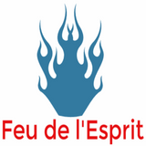 Feu de l'Esprit #13 – Laurent de StopMensonges.com