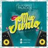 Mix Junio 2017 - Dj Rodrigo Palacios