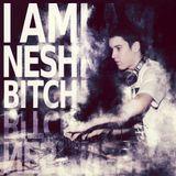 Nesh - 'Turbofunk' mixtape 2012. 05. 07.